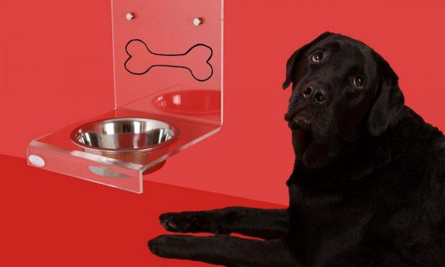 Die kleine Hundekochshow