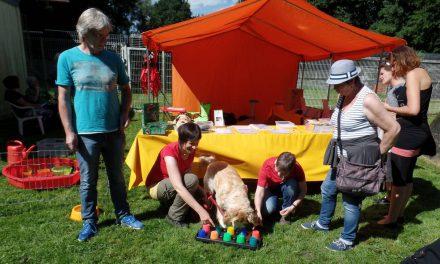 Tierheimfest 2016 – Rückblick